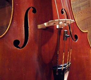 Bayshore Symphony, Mt. Vernon, WA orchestras